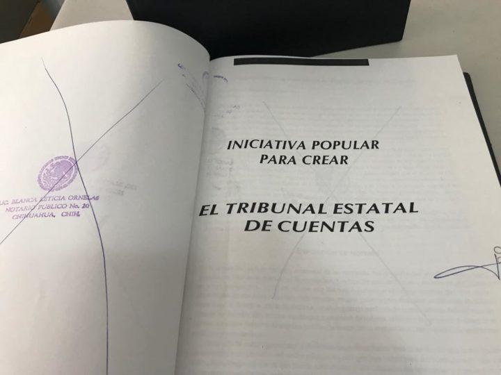 El plebiscito: el problema de recabar firmas