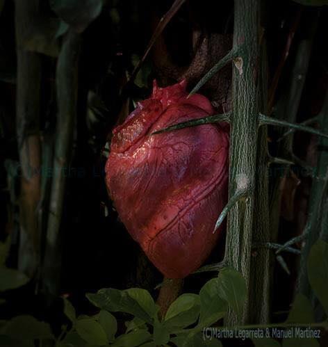 El corazón de un mundo sin corazón