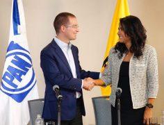 Alejandra Barrales, ladrona de herencias y legados